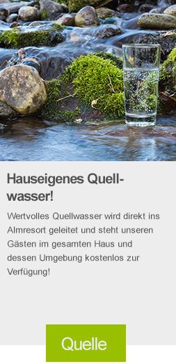 quellwasser, baumschlagerberg, gesund, wasser, reichhaltig