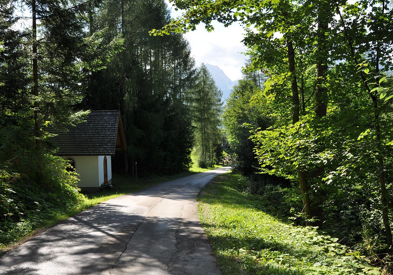 wandern, weg, ziel, entspannung, natur, spazierengehen, seniorenwandern