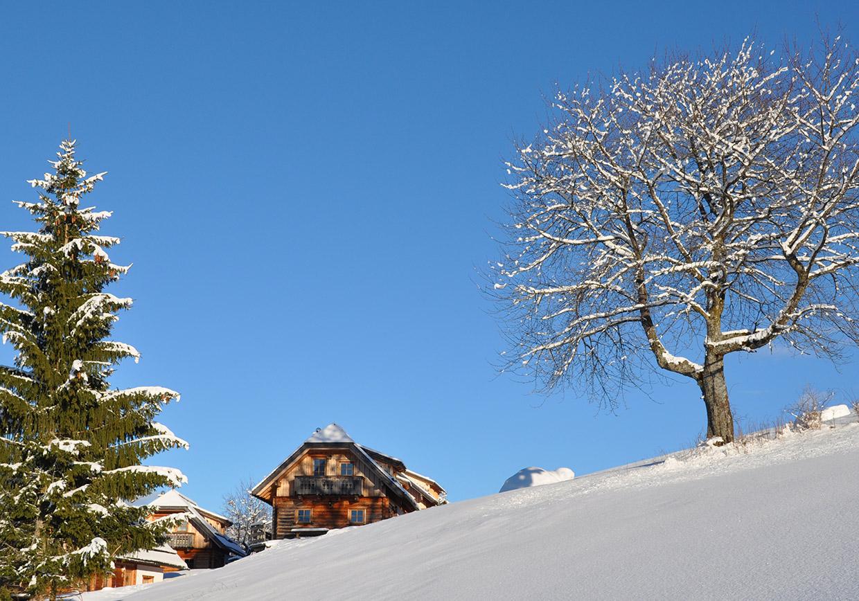 winterurlaub, hüttenurlaub, berge, schnee, rodeln, pferdeschlitten