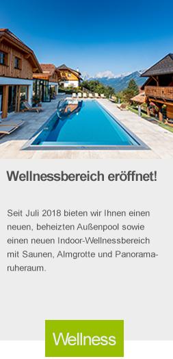 baumschlagerberg, umbau, vorderstoder, wellness, panorama chalet,