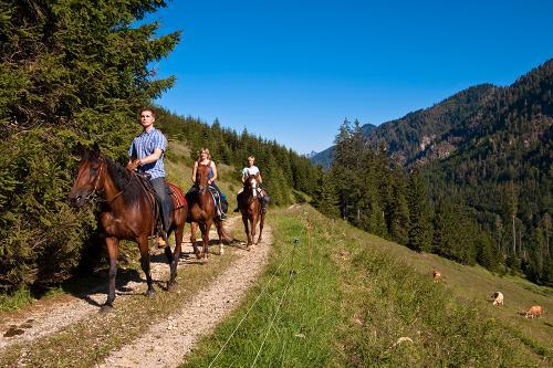 g-aktivurlaub-reiten-spass-vorderstoder-oberoesterreich-reiturlaub-pferde-pony