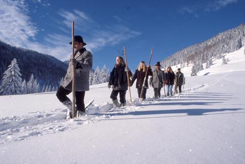 g-aktivurlaub-schneewanderung-schneeschuhwanderung-schnee-wandern-winter-urlaub