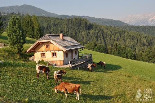 g-bauernhof-wiese-felder-berge-gute-luft-klima-urlaub-ferien-kinder