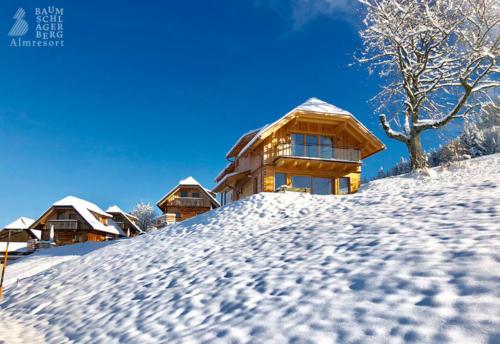g-huetten-baumschlagerberg-vorderstoder-urlaub-winterferien