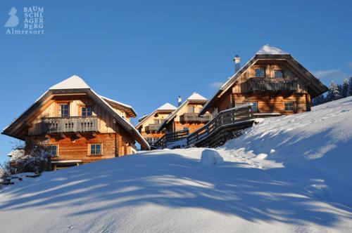 g-huetten-winter-landschaft-schifahren-langlaufen-berge-alm-kamin